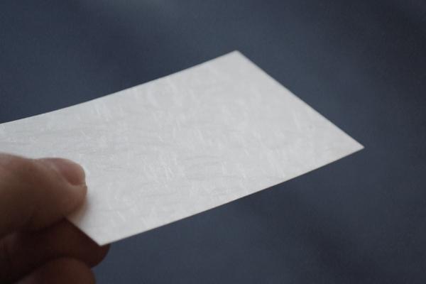 金粉が舞う越前和紙